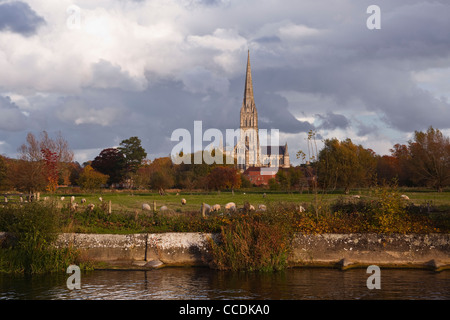 Looking across the river Nadder near to the Old Mill in Harnham, Salisbury. A classic view of St Mary's Cathedral. - Stock Photo