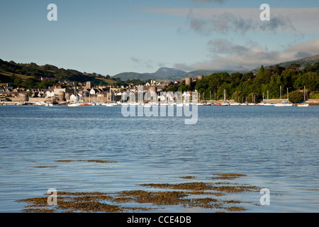 Conwy Castle & Town,North Wales - Stock Photo