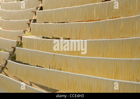 Noodles hanging out to dry on rods in Fuli near Yangshuo China - Stock Photo