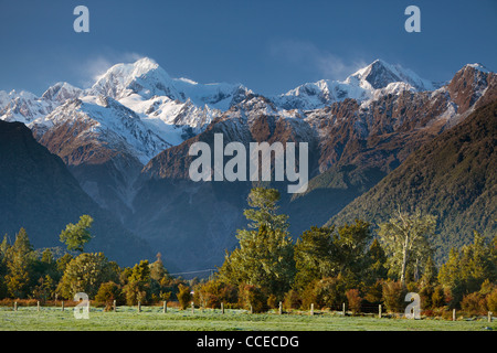 View of Mt Cook (Aoraki) and Mt Tasman as seen from near Lake Matheson in New Zealand - Stock Photo