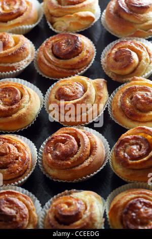 Fresh Cinnamon Buns - Stock Photo