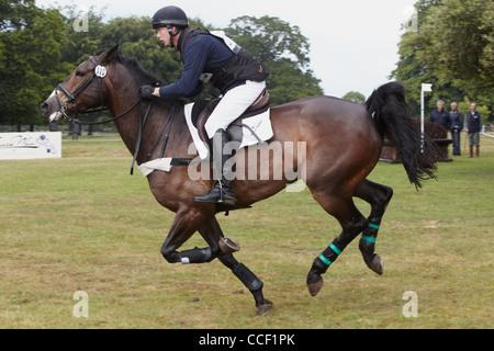 Richard Skelt riding Spotless Vision between fences - Stock Photo