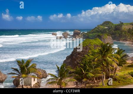 Rocky coastline along the eastern shore of Barbados at Bathsheba - Stock Photo