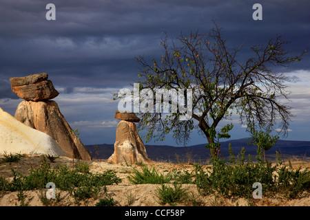 Typical Cappadocian landscape, close to Urgup, on the road to Goreme. Nevsehir, Anatolia,  Turkey - Stock Photo