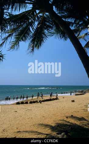 Traditional net seine fishing , Beruwala, Sri Lanka - Stock Photo