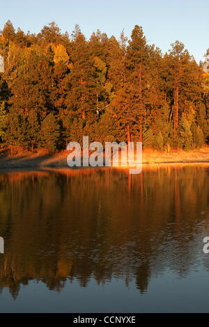 Oct. 14, 2004 - Greer, Arizona, United States of America - As the seasons change from summer to fall, the trees - Stock Photo