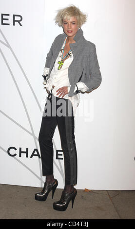 Oct 21, 2008 - New York, NY, USA - AGYNESS DEYN at the arrivals for the Mobile Art: Chanel Contemporary Art Container - Stock Photo