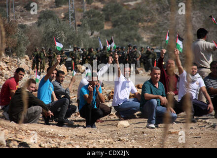Oct. 28, 2011 - Nablus, West Bank, Palestinian Territory - Palestinian protesters wave with their national flag - Stock Photo