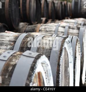 Oak port wine barrels in a row - Stock Photo