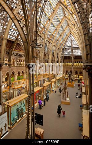 University of Natural History, Oxford, England - Stock Photo