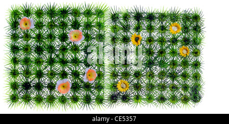 Quadratic, artificial grass, meadow, with yellow plastic flowers. Decoration. - Stock Photo