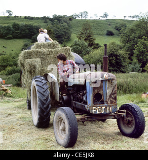 Haymaking in Wales about 1985 - Stock Photo