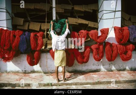 Man drying dyed coir yarn thread in coir factory ; kerala ; india - Stock Photo