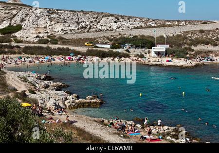 Calanques de Saint Esteve, Ile Ratonneu, Frioul Archipelago, Marseille or Marseilles, Provence-Alpes-Cote d'Azur, France, Europe