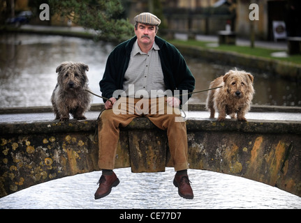 A man with a pair of Glen of Imaal Terriers UK - Stock Photo