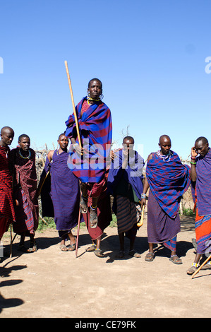 The men from a Masai village near the Serengeti National Park, Tanzania, perform a traditional jumping dance. - Stock Photo