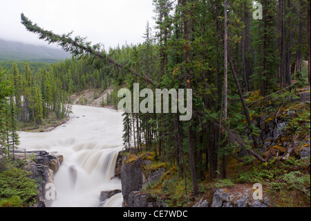 Upper Sunwapta Falls, Jasper National Park, Alberta, Canada - Stock Photo