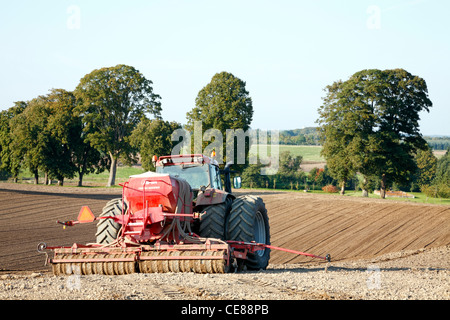 Tractor with sowing machine sowing wheat in the late summer in North Zealand, Denmark - Stock Photo