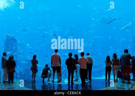 Dubai, Aquarium in the Atlantis The Palm Resort in Dubai - Stock Photo