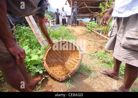 Sri lanka gem mining boone