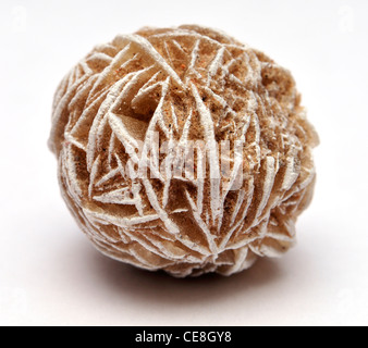 Baryte / Desert Rose - Stock Photo