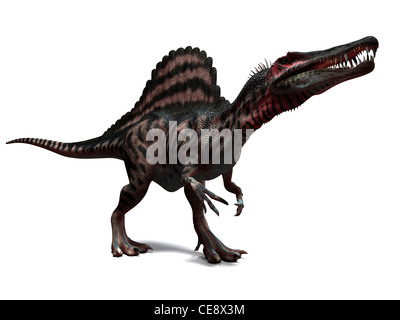 Spinosaurus dinosaur, computer artwork. This dinosaur lived 95 to 80 million years ago during the Late Cretaceous - Stock Photo
