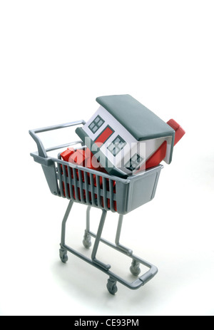 MODEL HOUSES IN SHOPPING TROLLEY RE HOUSING  MARKET HOME BUYERS PROPERTY BILLS COSTS HOUSEHOLD BUDGETS MORTGAGES SUPERMARKETS UK