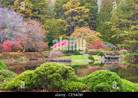 Fall color in Asticou Azalea garden on Mount Desert Island Maine. - Stock Photo