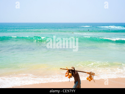 Local Sri Lankan trader walking along the beach with a coconut on his shoulders try to selling it - Stock Photo
