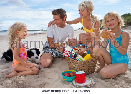 Family with dog picnicking on sunny beach - Stock Photo