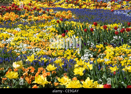 A colourful floral display captured at Floriade, Canberra, Australia - Stock Photo