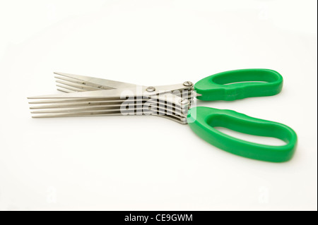 5 blade shredder scissors for shredding personal information / documents to stop fraud & identity theft - Stock Photo