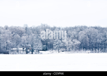 House in the snowy forest - Stock Photo