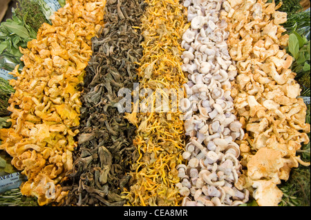 Borough Market , London , basket pile selection assortment of fresh mushrooms in greengrocer vegetable stall shop - Stock Photo