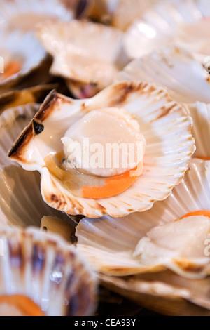 Borough Market London fishmonger big succulent fresh scallop taxonomic family of saltwater clam marine bivalve mollusk - Stock Photo