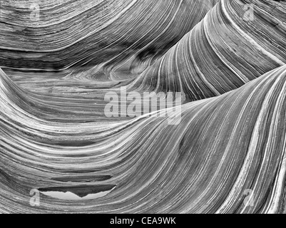 Sandtone formation and pool of water in North Coyote Buttes, The Wave. Paria Canyon Vermillion Cliffs Wilderness. - Stock Photo