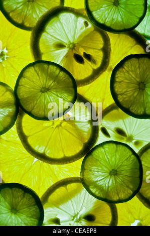 Slices of lemons, limes, and oranges - Stock Photo