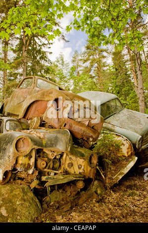 Discarded cars in nature - Stock Photo