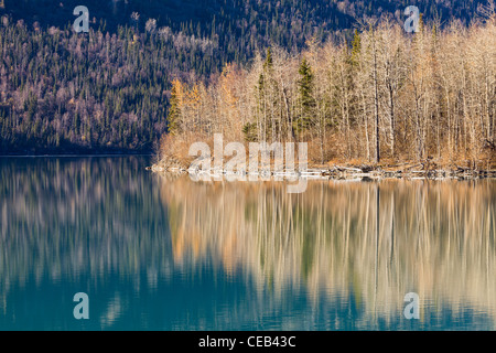 Reflection of mostly bare hardwood trees, spruce, and remaining fall colors on Eklutna Lake in Southcentral Alaska. - Stock Photo