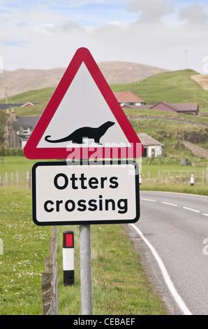 Red triangle road sign warning otters crossing. Whiteness, Shetland Islands, Scotland, UK, Britain - Stock Photo