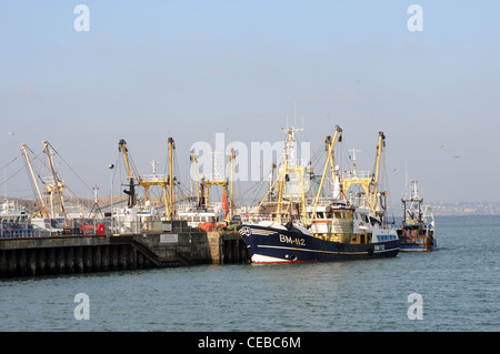 Fishing boats in Brixham Harbour, dingy, england, english, estuary, exterior, ferry, harbor, harbour, hill, hillside, - Stock Photo