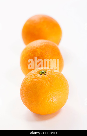 Citrus x sinenesis. Three blood oranges on a white background. - Stock Photo