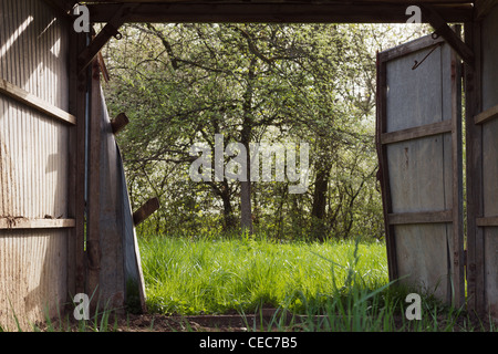 View through a open barn door into the spring with trees and fresh green grass. Vernal sunny outdoor shot. - Stock Photo