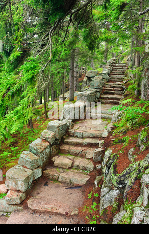 A stone staircase at the Thuya Gardens in Northeast Harbor, Maine. - Stock Photo