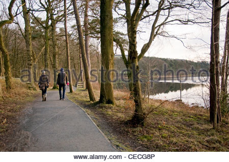 Couple (man & woman) walking on waterside path by scenic, calm, tree-lined lake - Swinsty Reservoir, Washburn Valley, - Stock Photo