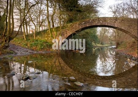 Historic Dob Park packhorse bridge over River Washburn in autumn sun, stone arch reflected in shallow water below - Stock Photo