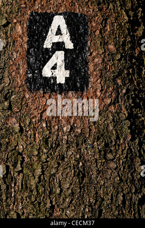 Hiking trail marker on a tree. (Oberbergisches Land, North Rhine-Westphalia, Germany, Europe). - Stock Photo