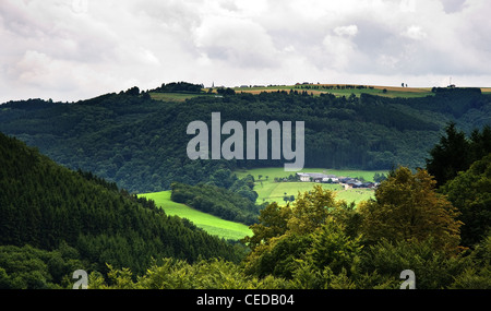 Green valley with farm and cows on summer morning under a cloudy sky - Stock Photo