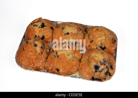 Tin of 6 supermarket fresh  blueberry muffins on white background cutout USA - Stock Photo