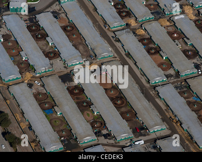 aerial photograph horse race track stables Golden Gate Fields Albany California - Stock Photo
